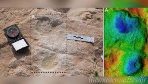 พบรอยเท้า อายุ 120,000 ปีในซาอุดีอาระเบีย